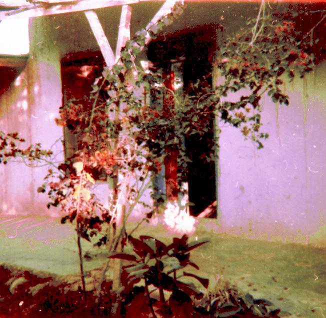2_1976-settembre-ottobre-Gerico-4